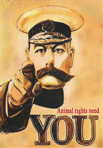 Animal rights need you image link to story