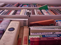 Books on a shelf image link to story