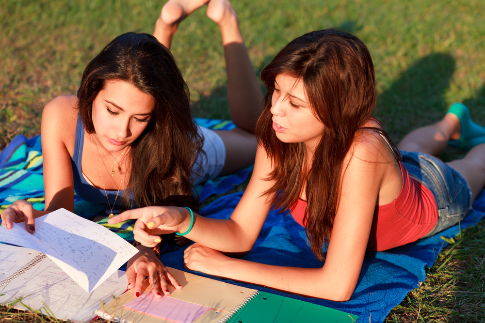 Students studying on the grass