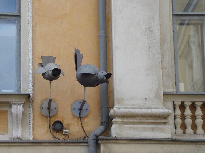 cameras designed to look like birds