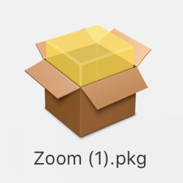 Zoom installer icon