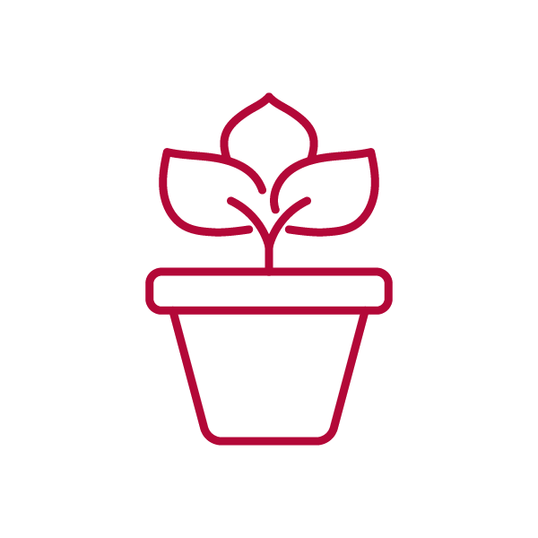 graphic of a potted plant