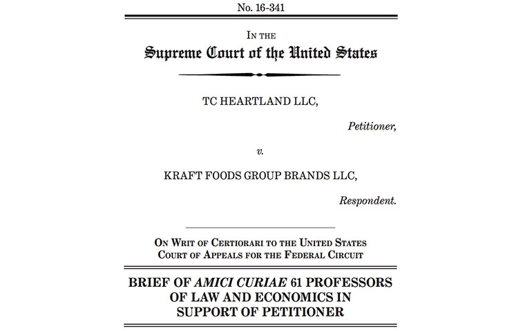 Amicus Brief image link to article
