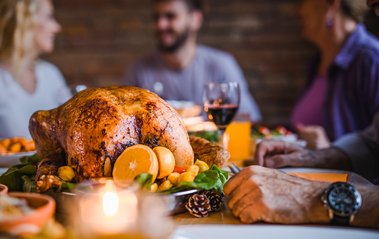 T-giving dinner image link to article