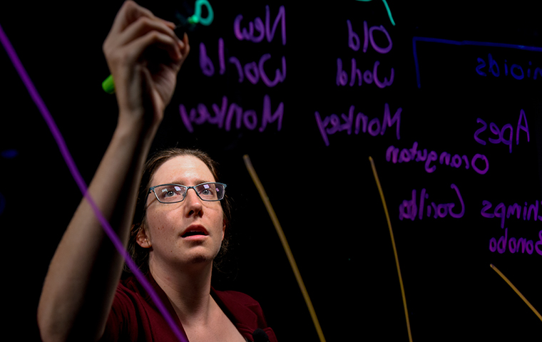 Tanya Chiykowski-Rathke writes on a lightboard image link to story