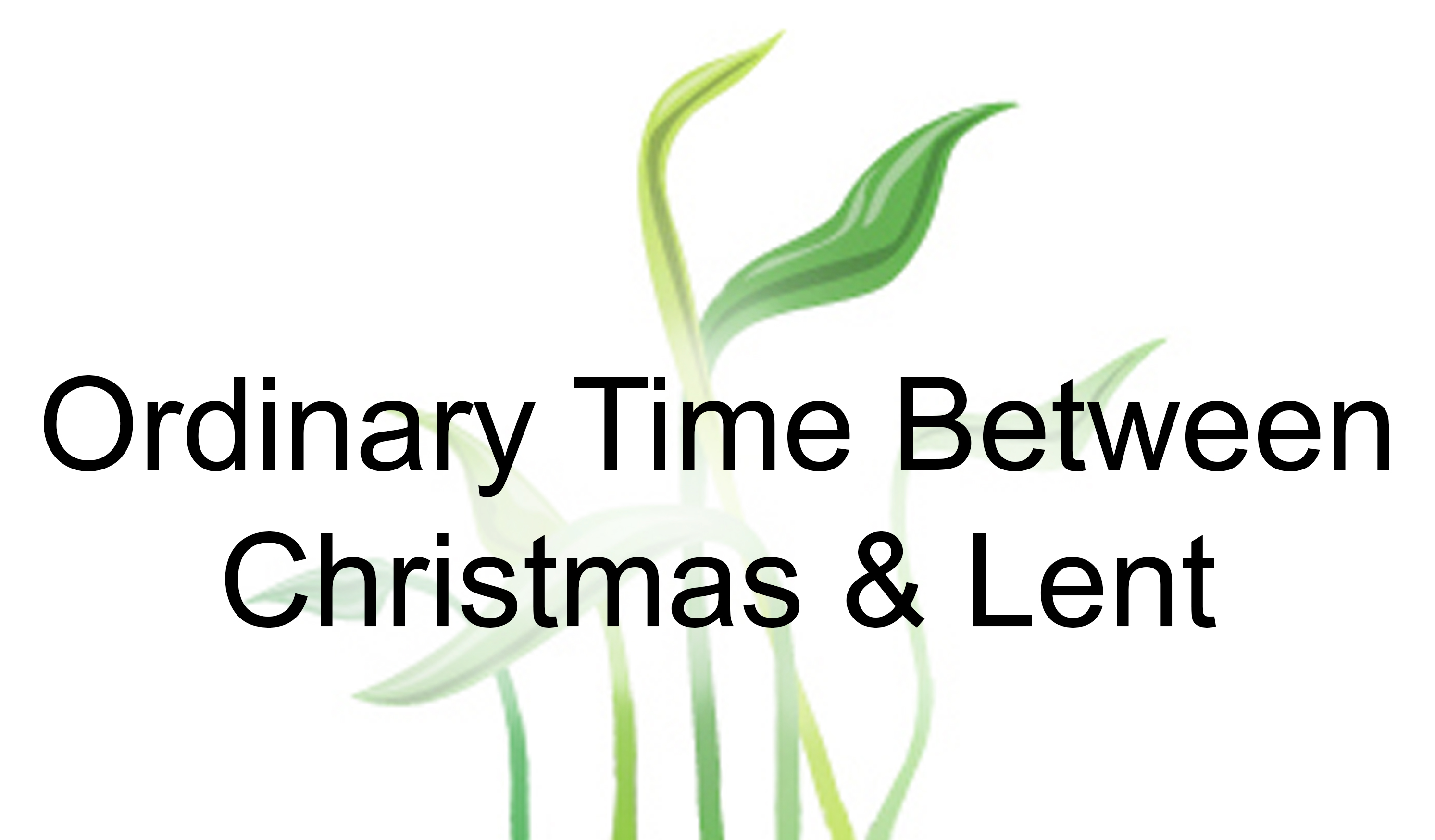 ordinary time xmas lent -