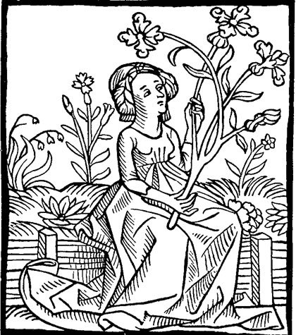 Lady and Flower Engraving