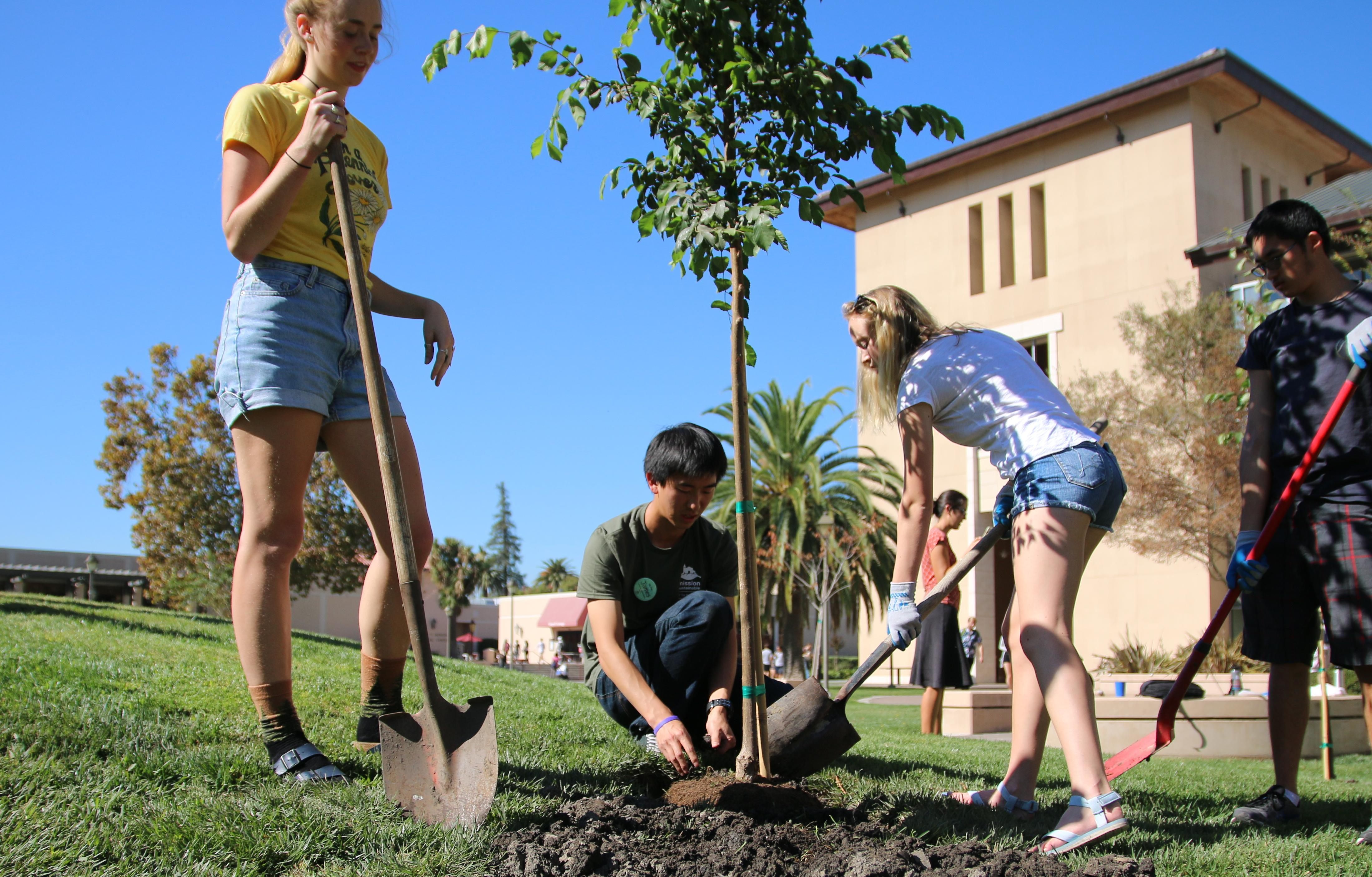 Cropped image of students planting trees at Arbor Day
