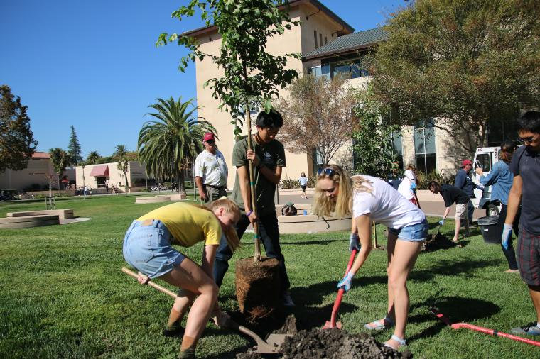 Students planting a tree on Arbor Day