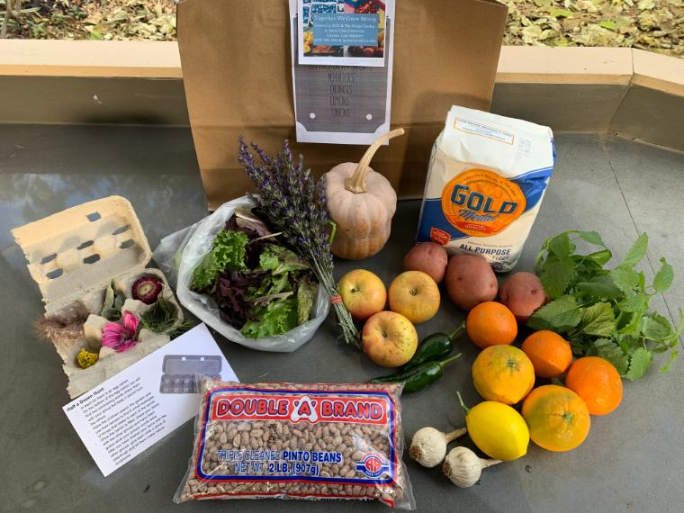 complete resiliency bag with Forge Garden produce, pantry items from Gardner neighborhood corner store, and family educational activity supplies
