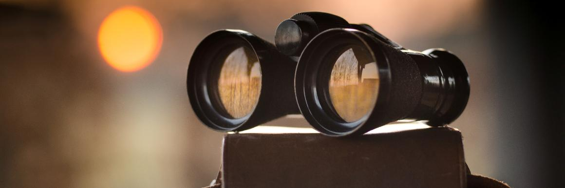 Binoculars on top of a binocular case with a serene meadow reflected in the lenses
