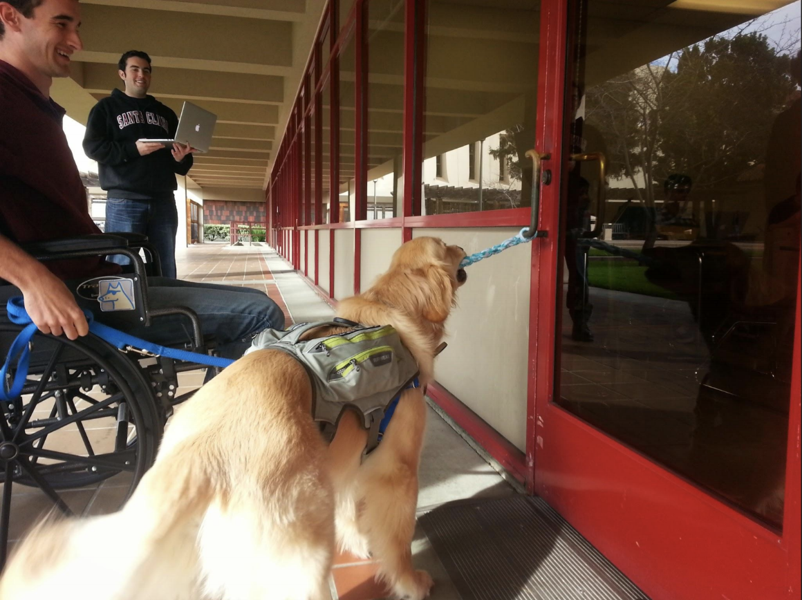 Students testing the Halo Dog Training Door Tug Prototype